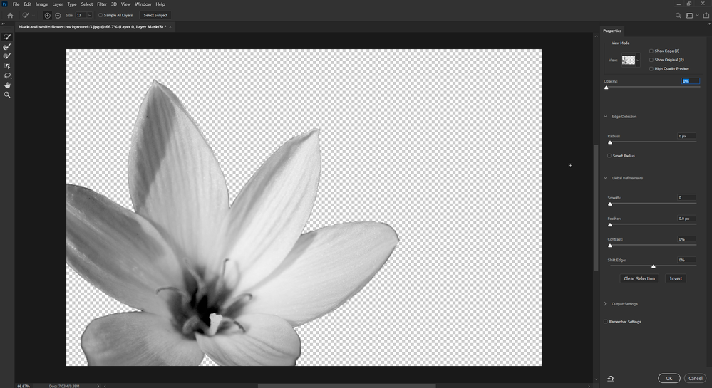 2020-10-08 17_12_58-black-and-white-flower-background-3.jpg @ 66.7% (Layer 0, Layer Mask_8) _.png