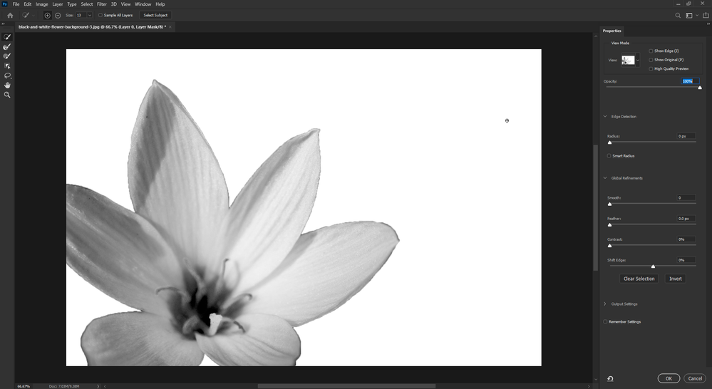 2020-10-08 17_16_46-black-and-white-flower-background-3.jpg @ 66.7% (Layer 0, Layer Mask_8) _.png