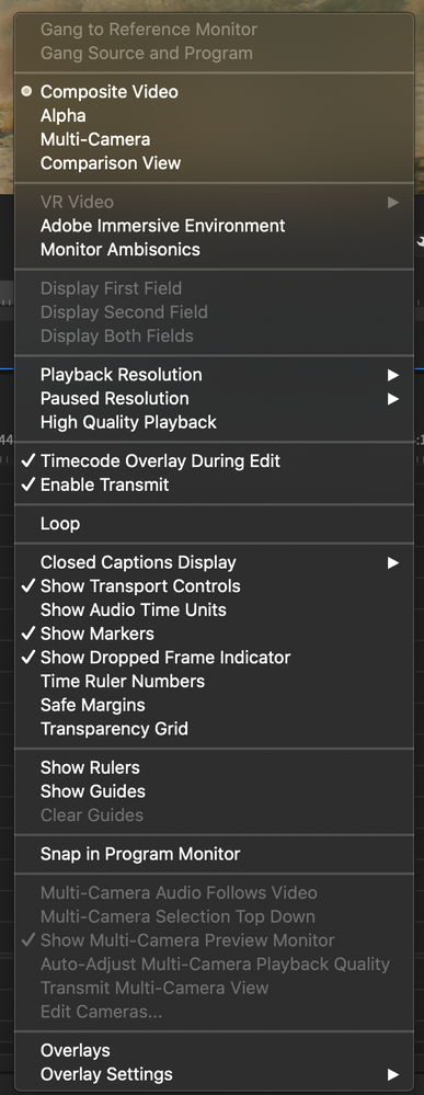 Playback Preview Window.png