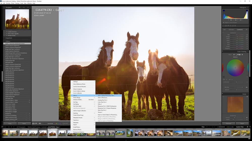 panoramic-ireland-sky-horses-1.png