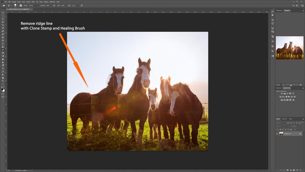 panoramic-ireland-sky-horses-2.png