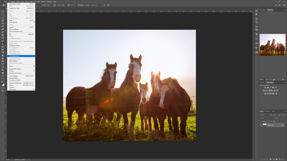 panoramic-ireland-sky-horses-3.png