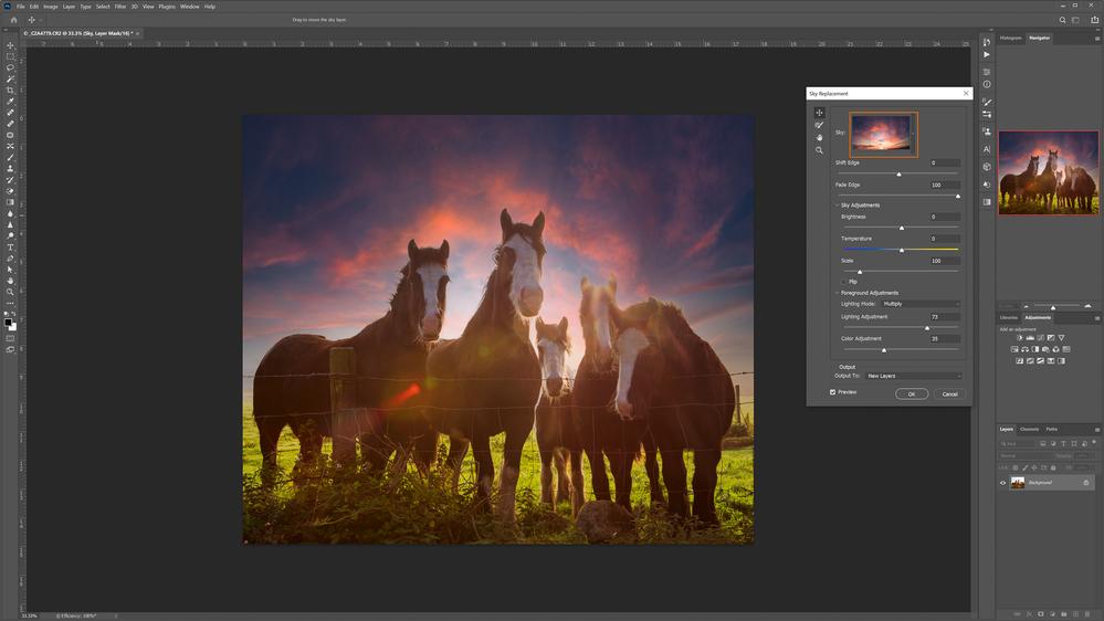 panoramic-ireland-sky-horses-4.png