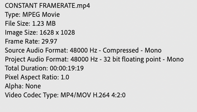 Screen Shot 2020-10-25 at 3.03.56 pm.png
