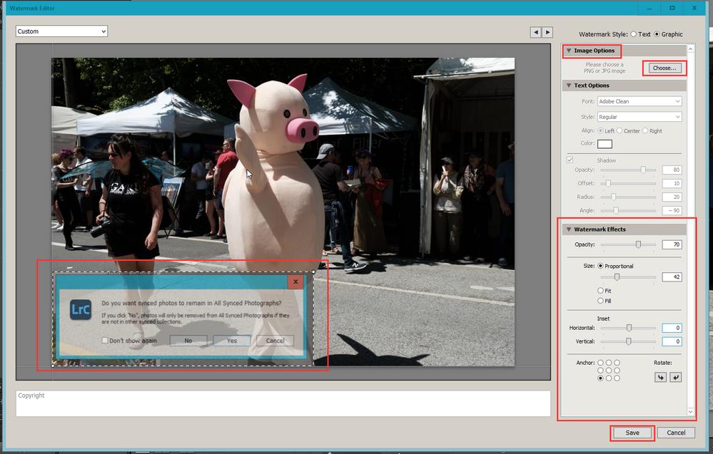 2020-10-25 21_45_07-LrC V10 Catalog - Adobe Photoshop Lightroom Classic - Develop.png