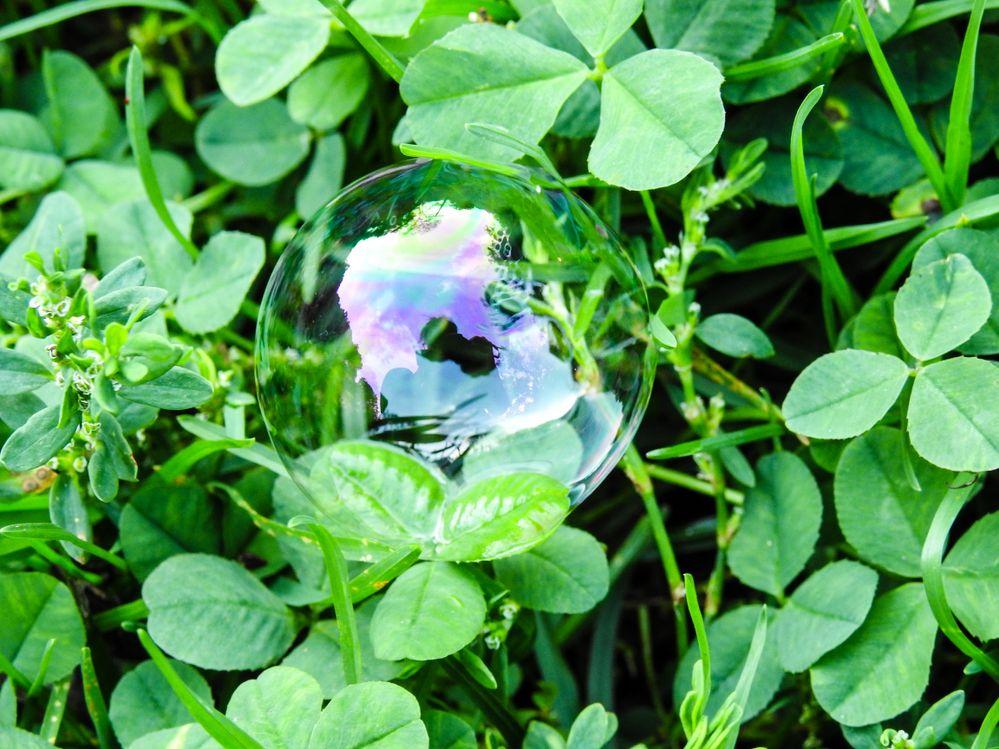 Bubble 5.jpg