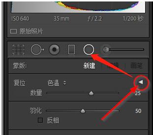 2020-10-29 16_00_48-lr的径向滤镜缺少参数问题 - Adobe Support Community - 11551807.png
