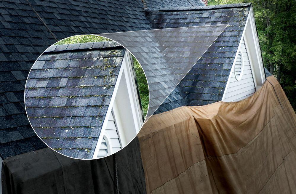roof-lichen-removal.jpg