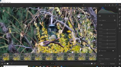 Lightrrom capture1.PNG