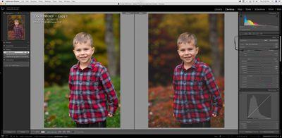 Screen Shot 2020-11-05 at 2.32.25 PM.jpeg