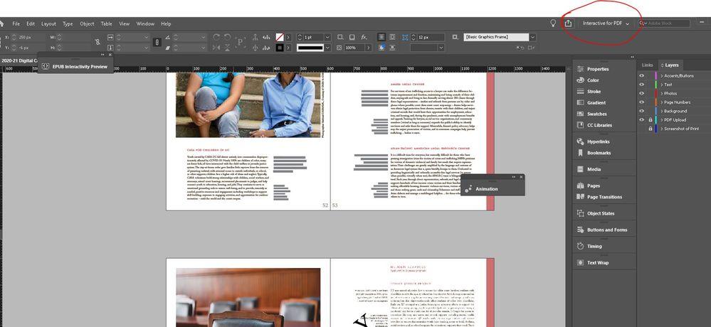 Screenshot for Interactive PDF.JPG