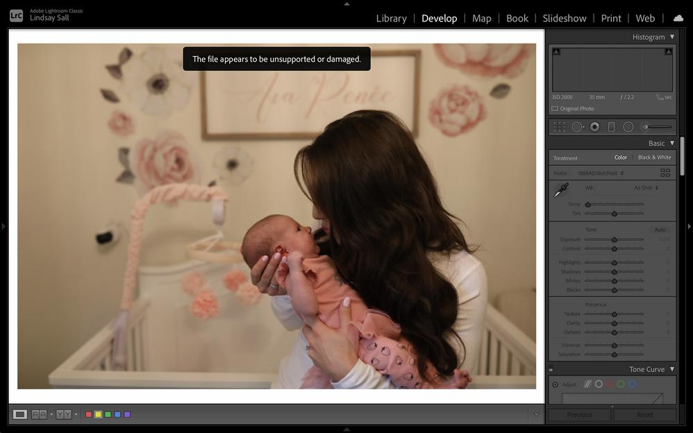Screen Shot 2020-11-08 at 11.19.16 AM.png