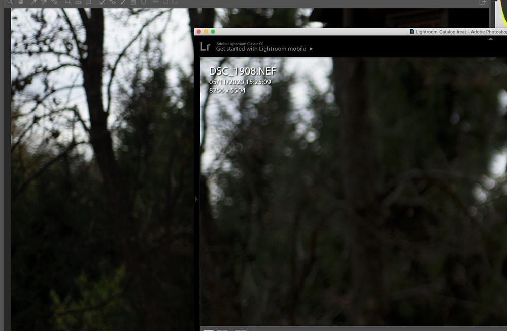 Screenshot 2020-11-10 at 19.24.32.png