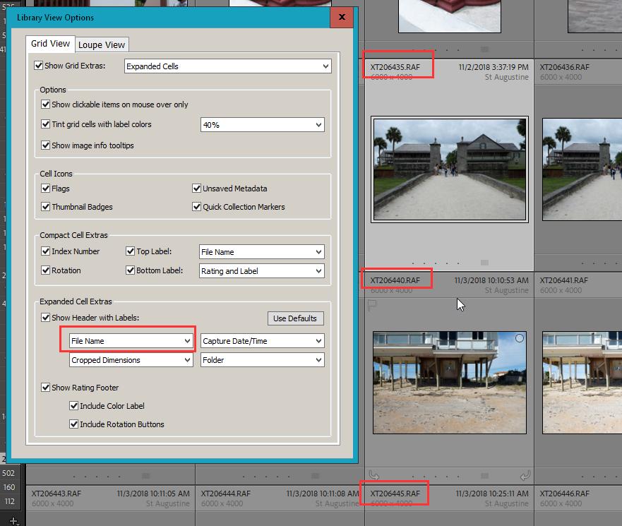 2020-11-11 20_07_22-LrC V10 Catalog - Adobe Photoshop Lightroom Classic - Library.png