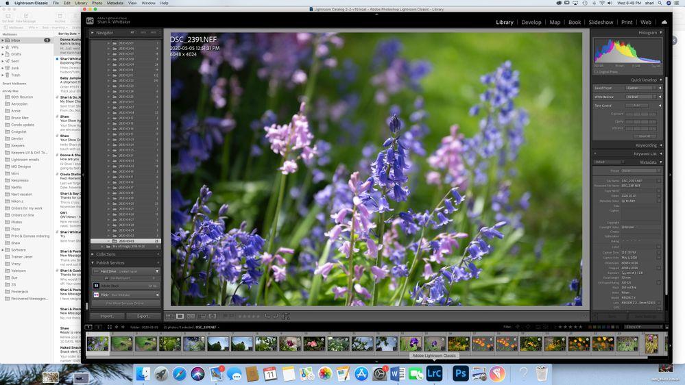 Screen Shot 2020-11-11 at 6.49.28 PM.jpg