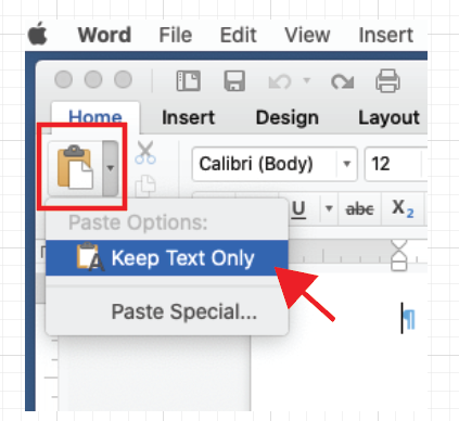 Word Paste options.png