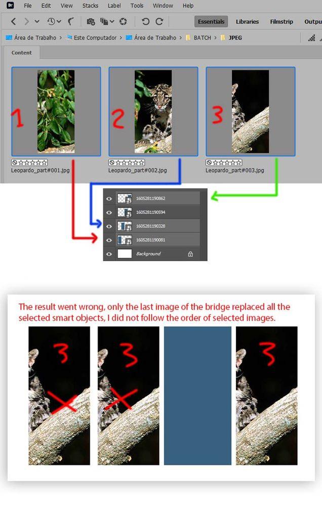 Captura de tela 2020-11-13 123045.jpg