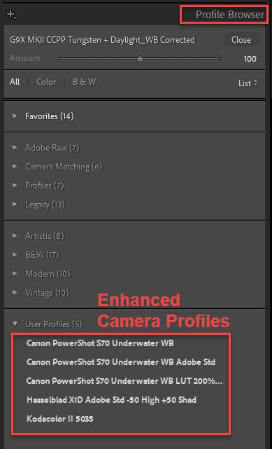 Enhanced Profiles.jpg