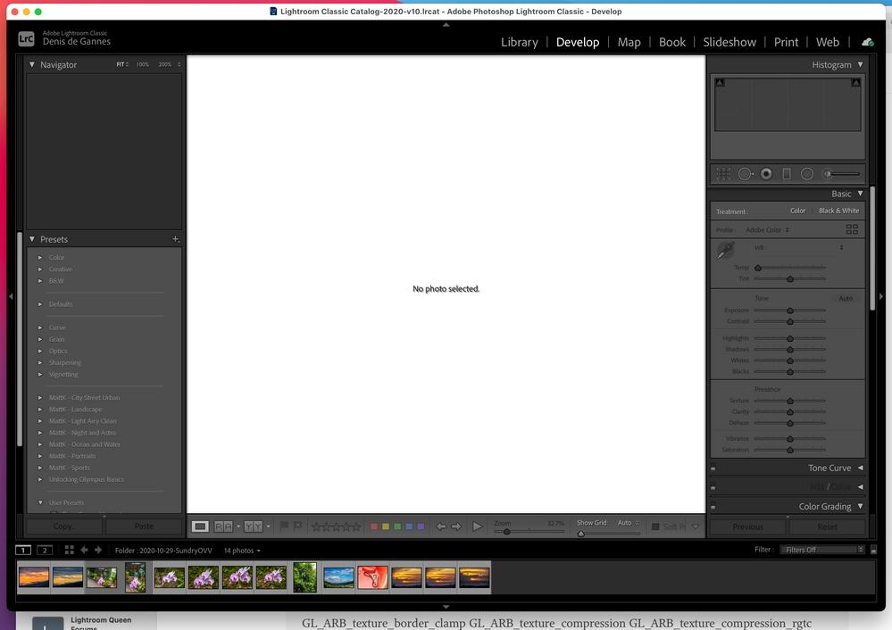 Screenshot 2020-11-17 at 2.08.30 PM.png