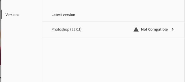 Screen Shot 2020-12-04 at 10.05.13.png