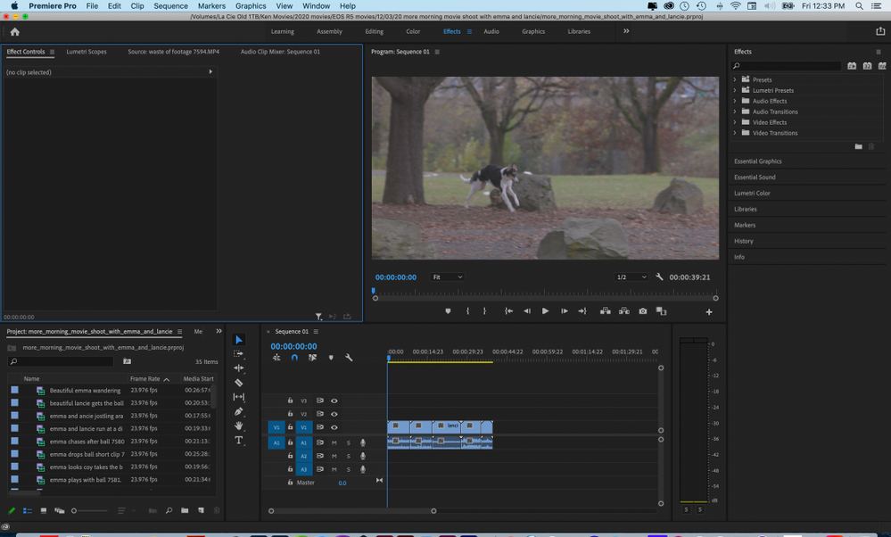 Premiere Pro without anything selected in timeline