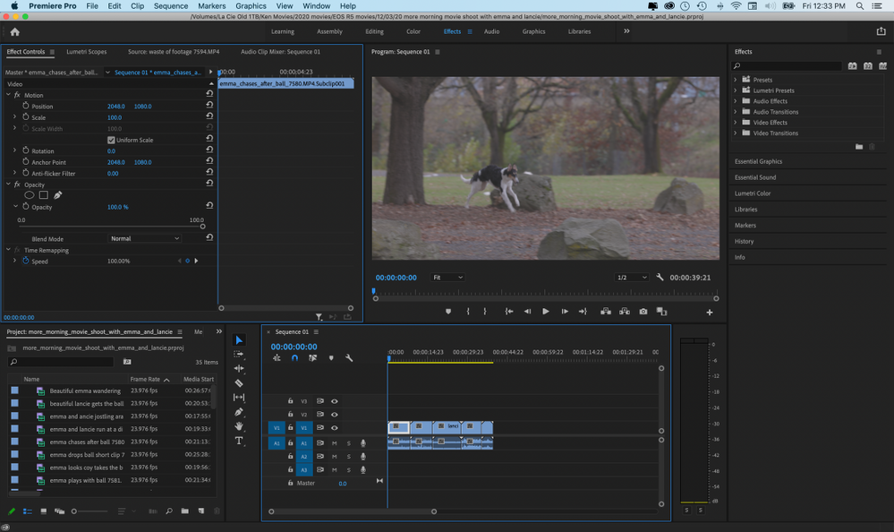Premiere Pro with clip selected in timeline