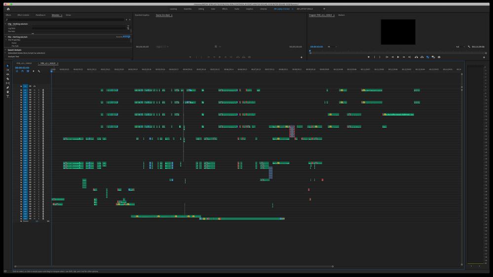 A whole lot of mixdown tracks.