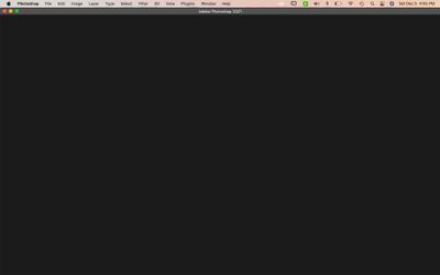 Screen Shot 2020-12-05 at 4.55.06 PM.png
