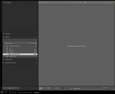 Screen Shot 2020-12-07 at 0.36.08.png