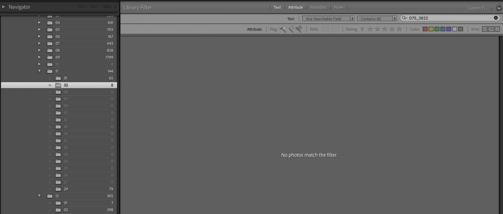 Screen Shot 2020-12-06 at 1.10.07 PM.png