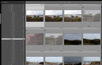 Screen Shot 2020-12-08 at 10.38.16 AM.png