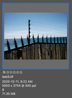 Screen Shot 2020-12-13 at 8.04.26 AM.jpg