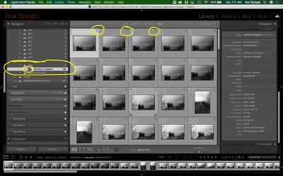 Screen Shot 2020-12-13 at 7.11.57 AM.png