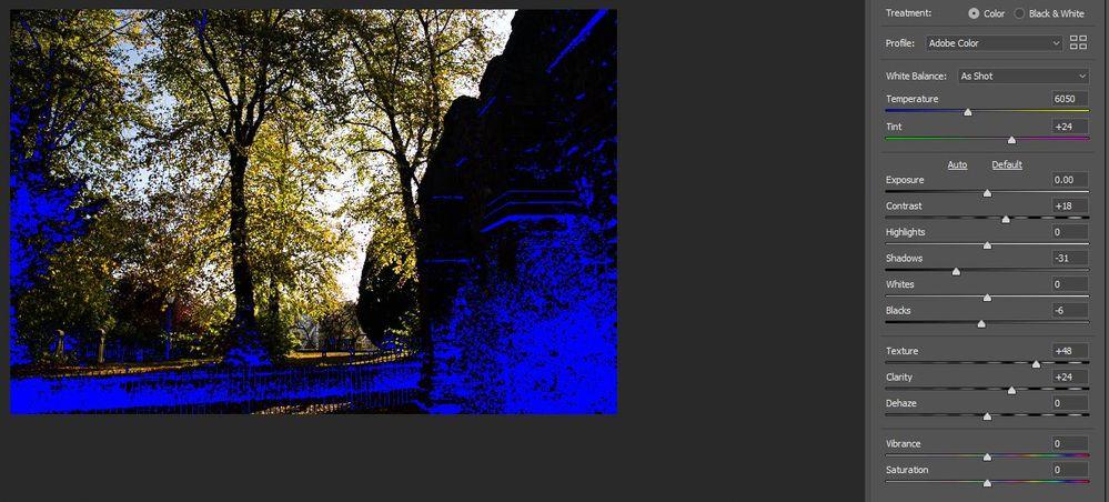 blue CRF.JPG
