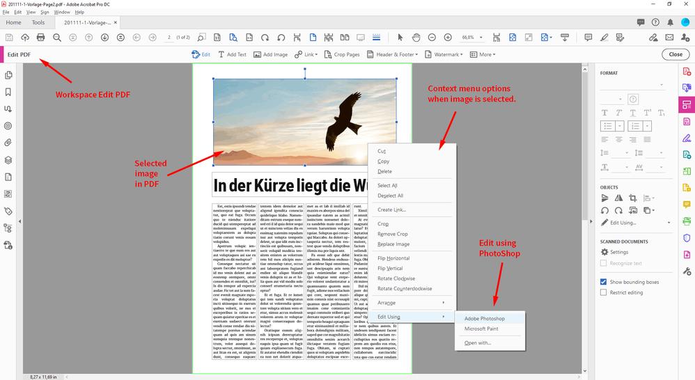 PDF-in-AcrobatPro-EditUsingPhotoShop-1.png
