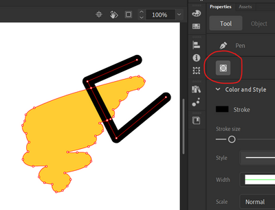 Animate 20.0.1 - Object Drawing Issue.png
