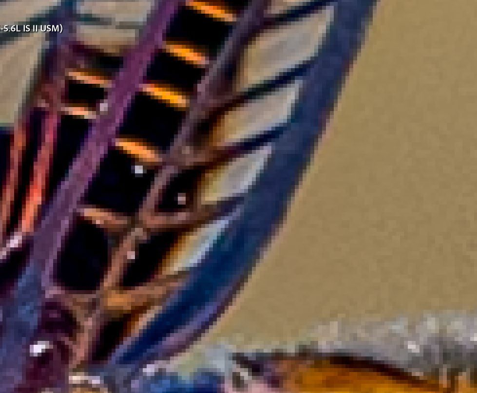 Insect zoom edit view.JPG