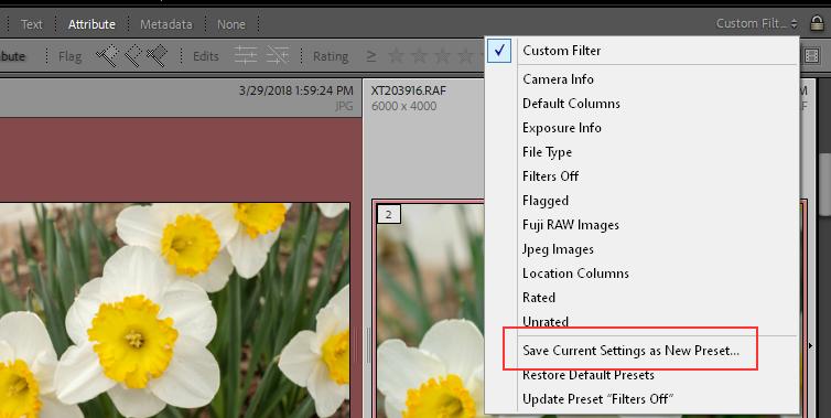2021-01-04 09_33_10-LrC V10 Catalog - Adobe Photoshop Lightroom Classic - Library.png