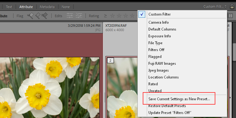 2021-01-04 09_33_10-LrC V10 Catalog - Adobe Photoshop Lightroom Classic - Library.png