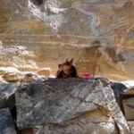 hexclimber