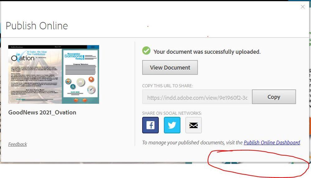 Publish Online Dissappearing Dialog Box.JPG