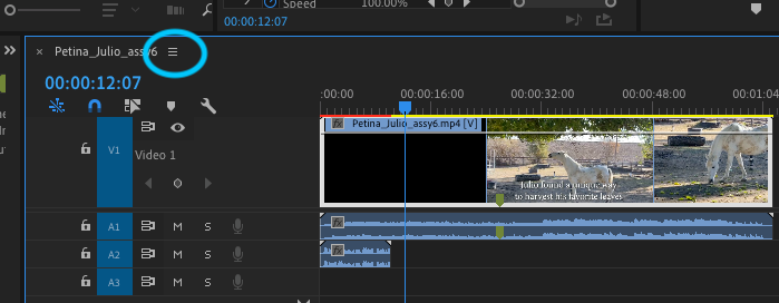 Screen Shot 2021-01-05 at 10.41.29 AM.png