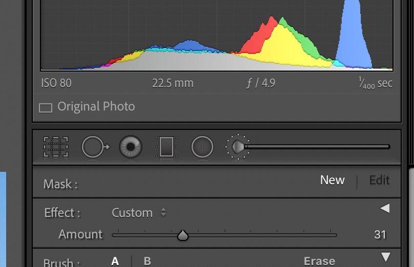 Screen Shot 2021-01-06 at 2.26.12 PM.jpg