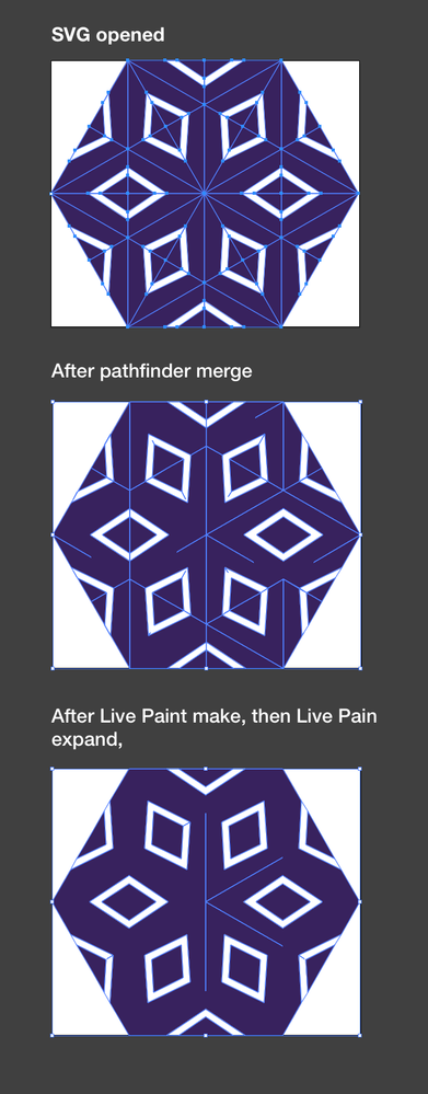 illustrator_merge_issue_complex.png