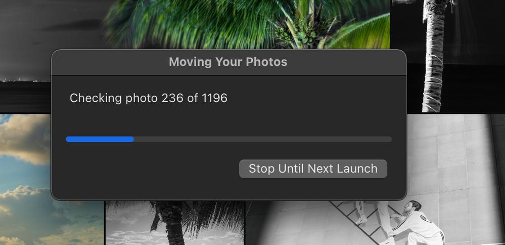 Screen Shot 2021-01-07 at 10.00.44 PM.png