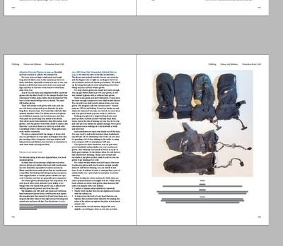 InDesign-Whole-Page-Graphic.jpg