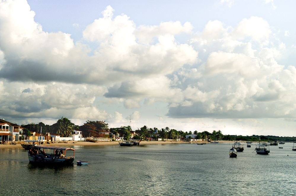 Simple Living by the Sea in a Small Fisherman Village.jpg