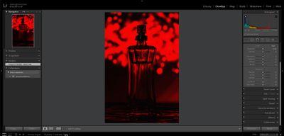 Lightroom-preview.JPG