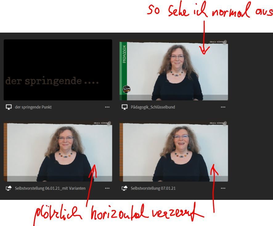 horizontal verzerrtes Video 2.JPG