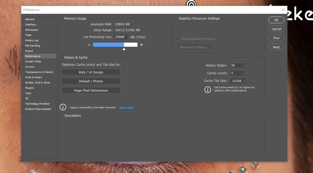 Graphics Processor Settings.PNG
